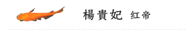 楊貴妃(紅帝)